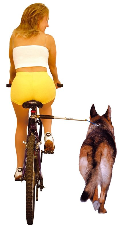 Walky Dog, support pour vélo